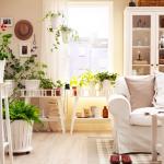 house_plants